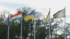 Flags of EU, Hungary, Ukraine, Mukachevo, Kosyno. Fluttering in the wind Stock Footage