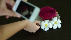 Woman Taking Photo of Dragon fruit Pitahaya with Smartphone Stock Footage