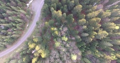 Sunset over the spring forest. Aerial view Stock Footage
