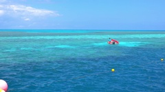 Great Barrier Reef, Corals Surfacing, Rescue Boat Stock Footage