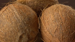 Three brown ripe tropical coconuts rotating on a black background. Tropical Stock Footage