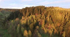 Sunset over the forest. Aerial view Stock Footage
