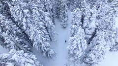 4k aerial drone footage.  Lonely hiker in the snow of Colorado Rocky Mountains Stock Footage