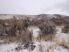 Aerial dolly shot of snowy mountain covered in sage brush Stock Footage