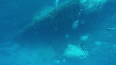 Diving in the red sea a group of divers submerged Stock Footage