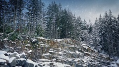 Rocky Forest Slope In Heavy Snowfall Stock Footage
