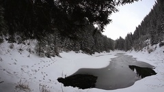 Winter landscape Rosohan alpine lake (1120 m), array Gorgan, Carpathians. Stock Footage
