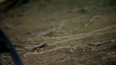 Close-up slow motion shot of mountain bike jumping on single-track dirt trail. Stock Footage