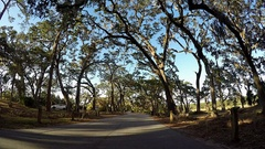 Jekyll Island State Park Vehicle Shot Stock Footage