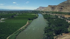 Aerial drone footage of the vineyards of Palisade, Colorado Stock Footage