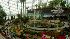 Gardens by the Bay, Singapore - 3 November 2016: Timelapse of visitors at Flower Stock Footage