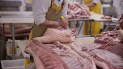 Meat processing at a meat factrory. Food industry. Fresh Raw Pork Chops in Meat Stock Footage