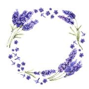 Wildflower lavender flower wreath in a watercolor style isolated Stock Illustration
