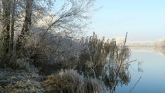 Rime frost landscape at Havel river (Havelland, Brandenburg - Germany). Mor.. Stock Footage