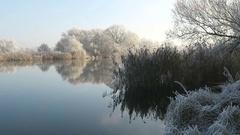 Rime frost landscape at Havel river (Havelland, Brandenburg - Germany). Stock Footage