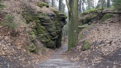 Stairs lead down to forest, rock formations, Germany Stock Footage
