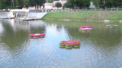 Flowers in vases on the water. Stock Footage