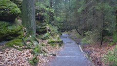 Stairs lead down path to lush green forest, rock formations, Germany Stock Footage