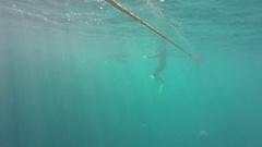 Great Barrier Reef, Rope Floating Under Water Stock Footage