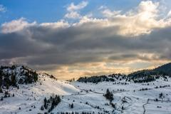 Spruce forest on snowy meadow Stock Photos