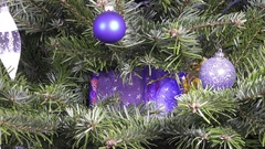 The gift bag is hidden on branches of a New Year tree Stock Footage