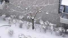 Aerial view of small parterre on cold blizzard snow winter day Stock Footage