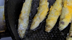 Fish fried in a skillet. Smelt. Stock Footage