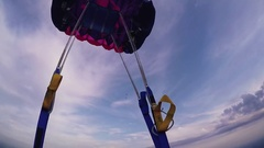 Professional skydiver open parachute. Flight over green field, forest. Landscape Stock Footage