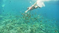 Snorkeling Fish Girl Reef Underwater Slowmotion Stock Footage