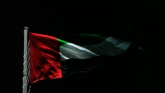 Flag of the UAE at night Stock Footage