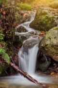 Enjoyable autumn landscape with a brook. Stock Photos
