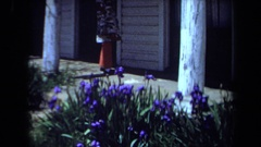 1971: a patch of pretty wildflowers near a home with white siding MAINE Stock Footage