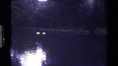 1983: a dark and quiet night in a farm near the river showing a group of ducks. Stock Footage