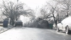 Residential Neighborhood Tree Storm Damage After Ice Storm Stock Footage