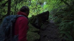 Backpacker on the Trail to Watson Falls Oregon Stock Footage