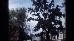 1970: tall trees eclipsing the blue skies at the early hours of daytime. Stock Footage
