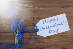 Sunny Srping Grape Hyacinth, Label, Happy Valentines Day Stock Photos