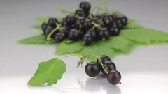 Closeup black currant on a background made of black currant Stock Footage