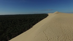 Video of pine forest near to the largest sand dune Stock Footage