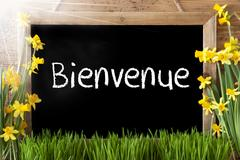 Sunny Spring Narcissus, Chalkboard, Bienvenue Means Welcome Stock Photos