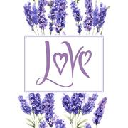 Wildflower lavender flower frame in a watercolor style isolated Stock Illustration