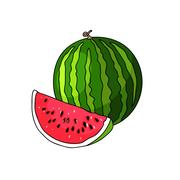 Juicy watermelon summer fruit and a slice of watermelon Stock Illustration
