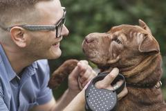A young man smiling at his Staffordshire Terrier/Shar-Pei dog, close-up Stock Photos