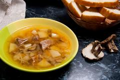 Mushroom soup in green plate, dried wild mushrooms and basket of bread on a.. Stock Photos