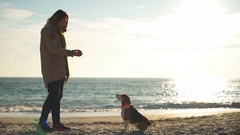 A young woman throwing a ball to a beagle who runs to catch it on the beach Stock Footage