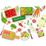 Collection Of Different Fresh Organic Vegetables Illustration With Farm Grown Stock Illustration