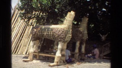 1984: two animal statues are being built with bamboo rods CAMBODIA Stock Footage