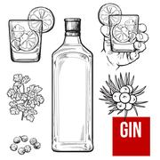 Gin bottle, shot glass with ice and lime, juniper berries Stock Illustration
