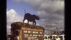 1983: vehicles backed up waiting to go through a national park entrance station Stock Footage