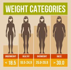 Body mass index retro poster. Stock Illustration